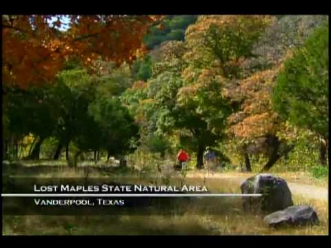 Lost Maples State Natural Area, Texas [Official]