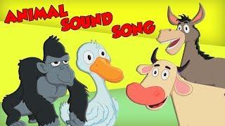 Canção de som animal | Rimas infantis | Canções de bebê | Animal Sound Song