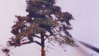 How to paint a ponderosa pine tree