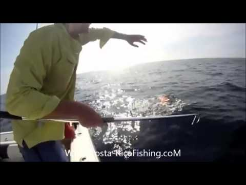 Costa Rica Fishing Trips  - Sport Fishing Costa Rica - Costa Rica Fishing Packages