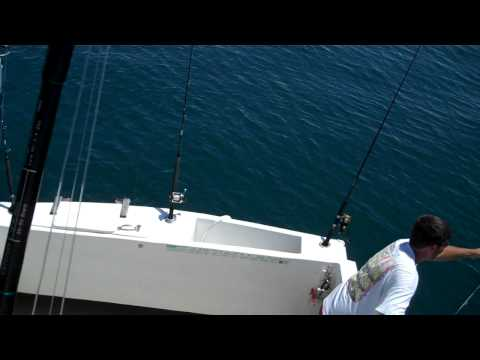 Charter Fishing Boat Miss Mary Mexico Beach Florida Dr.Rob 5