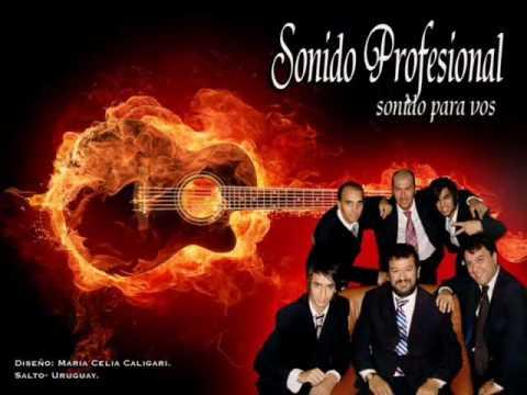 SONIDO PROFESIONAL DE ARTIGAS . SEÑORA SOLEDAD--.wmv