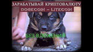 Зарабатываем dogecoin без вложений + кран Litecoin . Заработок криптовалюты с нуля
