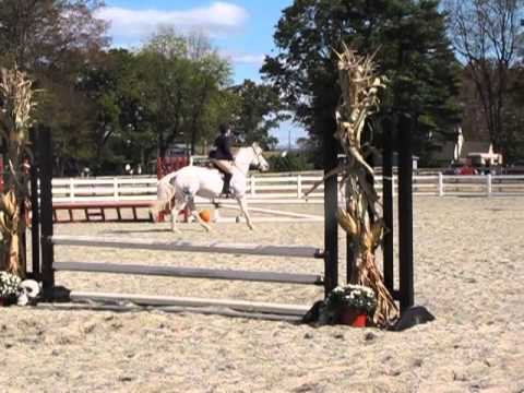 Linden Hall Benefit Show - Green Hunter Course B 2' - 10/27/2013