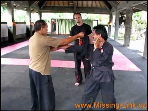 Silat - Training in Indonesia 2011 / 2012 Image 1