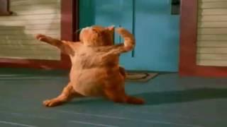 Garfield Happy Birthday Dance