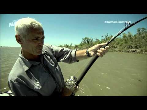 Asesino Silencioso - Monstruos Río - Parte 2