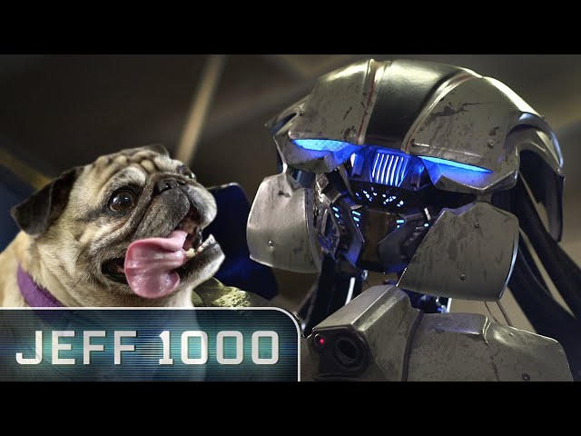 Pug vs Giant Robot | Jeff 1000 Starring Summer Glau