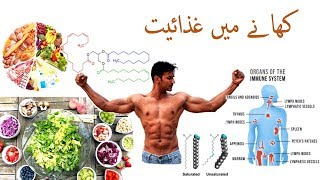 """""""Nutrition In Food"""". Learn How To Cooking Healthy & Better Food.Urdu - Hindi Video 2"""