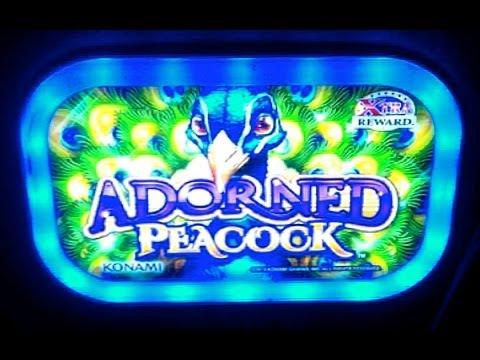 adorned peacock slot machine