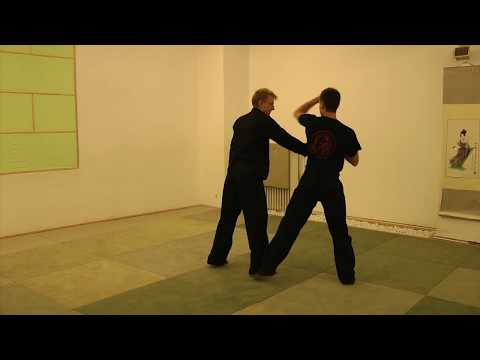 Wing Chun Kung Fu - Ip Man Style - Fight Apps - Self Defense Image 1