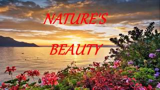 Nature 39 S Beauty Ft Pure Sounds