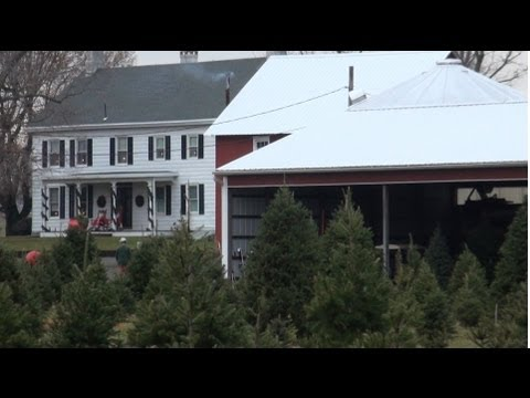 BULLOCK FARMS CHRISTMAS TREE FARM CREAM RIDGE NEW JERSEY