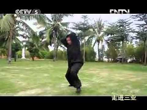 Baji Quan fight application by Wu DaWei Image 1