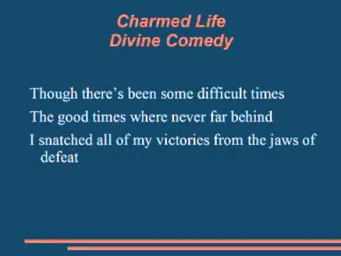 The Divine Comedy - Charmed Life