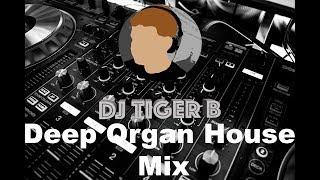 Deep Organ House Mix (Dj Tiger B)