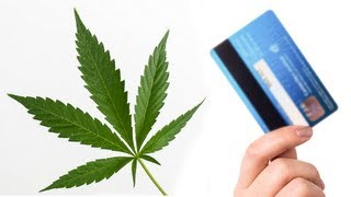 You Can Buy Weed With Your Credit Card Now  8/31/13