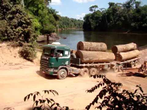 Transporte de Toras