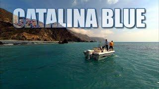Calico Bass Fishing Catalina Island California with DOA Lures