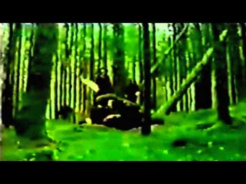 Immortal - Call Of The Wintermoon [HD]