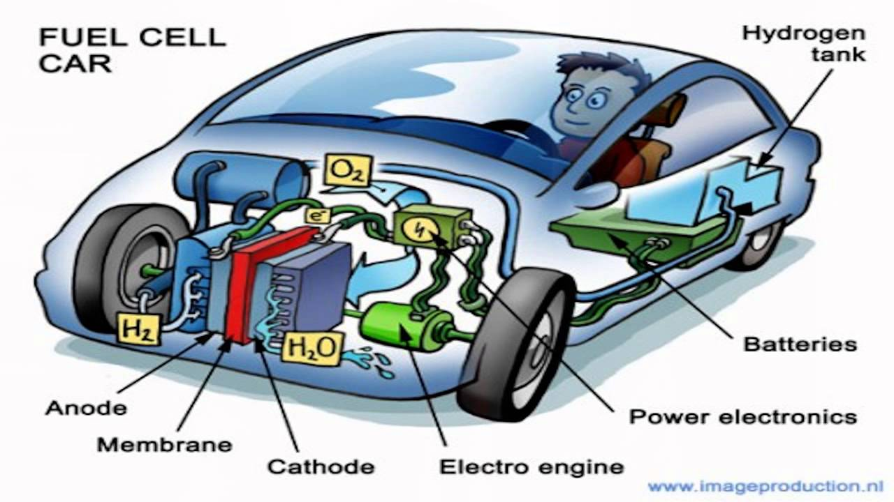 cell fuel hydrogen thesis vehicle Hydrogen fuel cell vehicles to a conventional vehicle with a gasoline how do fuel cells work a single fuel cell consists of an electro.