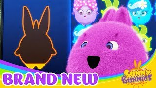 Videos For Kids | SUNNY BUNNIES - Magic Pop! | Funny Videos For Kids Videos For Kids
