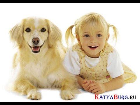Приколы про детей видео смотреть ...: pictures11.ru/prikoly-pro-detej-video-smotret.html