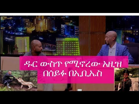 Seifu  Interview with Azize