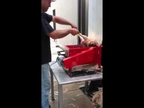 Dux Industries Table Top Chicken Plucker in action