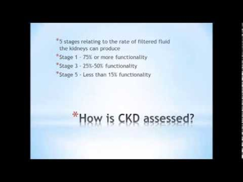 Chronic Kidney Disease - Find out how to reverse Chronic Kidney Disease naturally