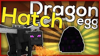 Minecraft: How to hatch a dragon egg!