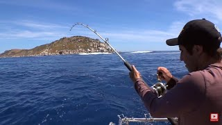 YELLOWTAIL KINGS AT THE GLENNIES - YouFishTV
