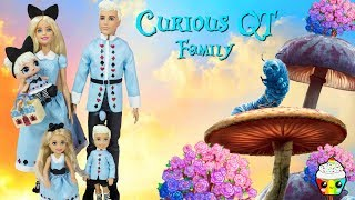 Curious QT Family DIY Custom Fun Craft With Barbie Dreamtopia Royal Family
