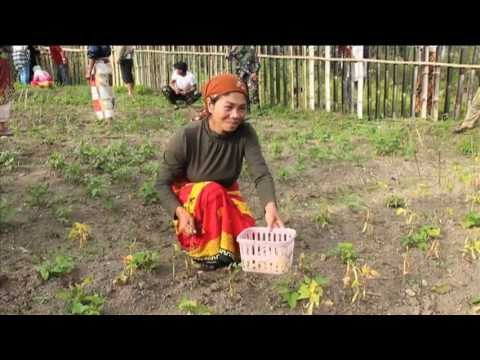 Mindanao: Cultivating The Land Of Promise video