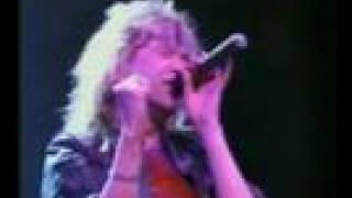 Watch Magnum Wild Swan video