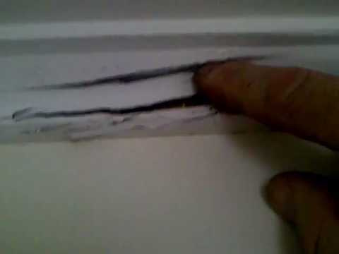 Termite Damage To A Ceiling Cornice by The Pest Company | Gold Coast and Northern NSW