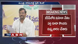 Somireddy fires on YS Jagan, Sharmila over comments on TDP