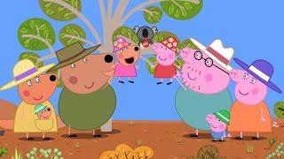 PEPPA PIG MY FIRST CINEMA EXPERIENCE: PEPPA'S AUSTRALIAN HOLIDAY – On Digital & DVD