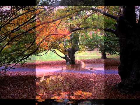 Charlie Byrd - / For Louis / - Autumn in New York
