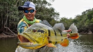 CRISTIAN VANEGAS Amazing Peacock Bass Fishing in Colombia 2016