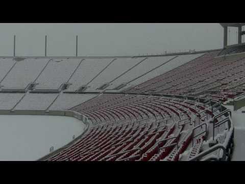 Snow At Papa John's Cardinal