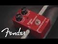 Yngwie Malmsteen on his New Line of Fender Accessories
