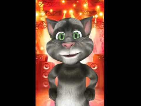 Gatto Tom - Controlliamo Quello Che Stai Facendo