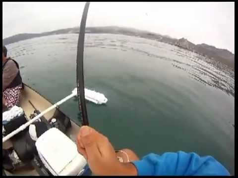 Fishing report - port sanluis rock fishing Video