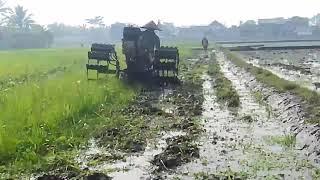 Aksi Membajak Sawah,the tractor diesel rotary