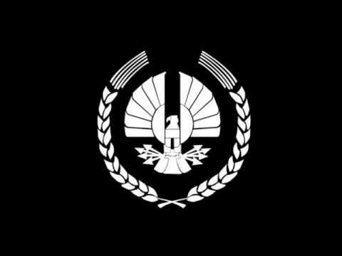 dystopian flag