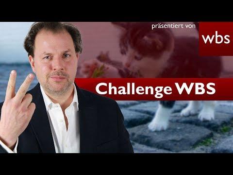 Tiere bald rechtlich keine Sachen mehr? - Gesetzesänderung realistisch?   Challenge WBS