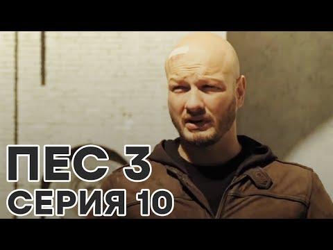 Сериал ПЕС - все серии - 3 сезон - 10 серия - смотреть онлайн