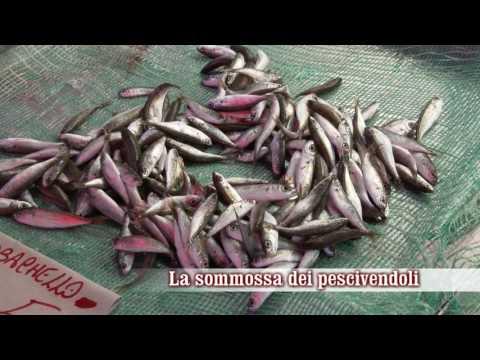 Sommossa dei pescivendoli