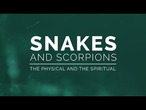 Snakes and Scorpions: The Physical and the Spiritual - 119 Ministries